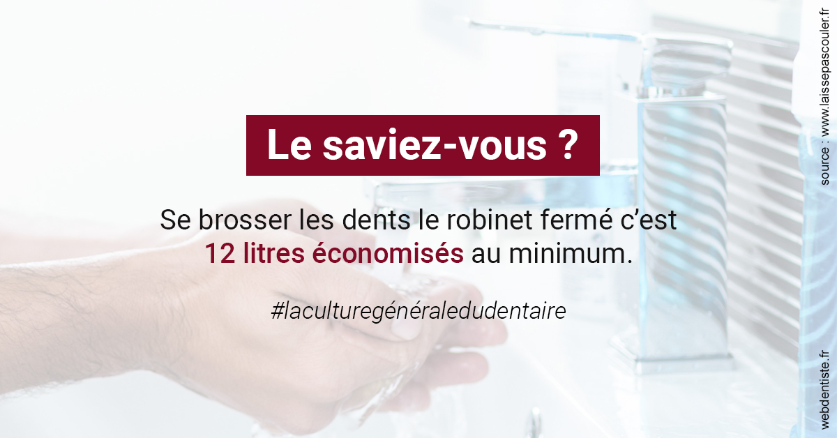 https://dr-ay-ibrahim.chirurgiens-dentistes.fr/Economies d'eau 2